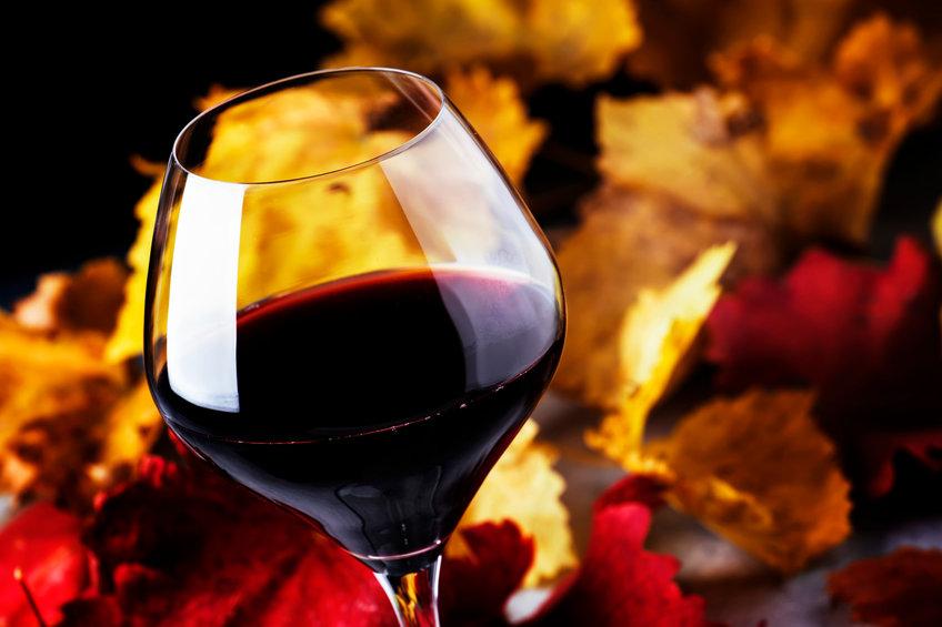 Tempranillo vin